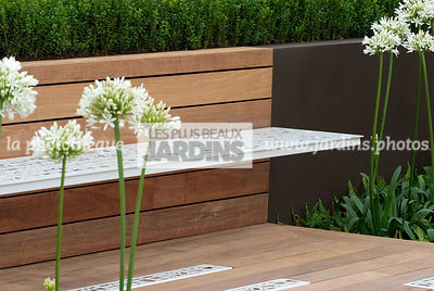 Agapanthus, Bench, Contemporary garden, Garden furniture, Perennial, Resting area, Wooden Terrace, Digital