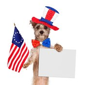 Fourth of July Dog With Sign