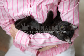 A black kitten snuggled by a woman in pink looking at the camera