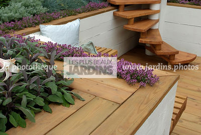 Aromatic plant, Condiment, garden designer, Stair, Terrace, Thyme, Contemporary Terrace, Digital