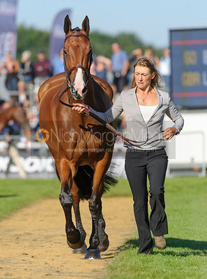 Louisa Lockwood and BALLYFARRIS FLIGHT - The final trot up, Burghley Horse Trials 2013.