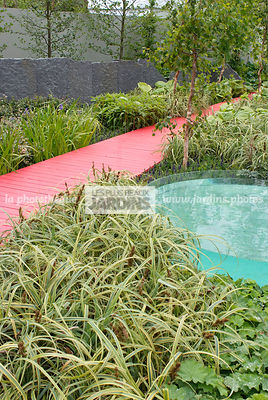 Contemporary garden, Perennial, Red, Urban garden, Wooden footbridge, Digital, Grasses