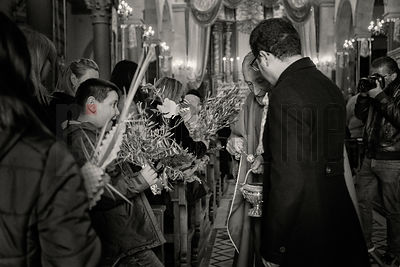 The Priest Blesses Palms and Sprigs of Olive with Holy Water during the Palm Sunday Mass