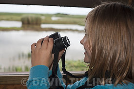 Young girl (aged 10) bird watching at Minsmere RSPB Reserve summer (Model released)