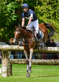 Tim Price and RINGWOOD SKY BOY - Cross Country phase, Mitsubishi Motors Badminton Horse Trials 2014