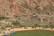 Rafts, Kayaks, & Pack Train Near Phantom Ranch- Grand Canyon