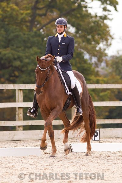 West Wilts British Dressage on Thursday, October 27, 2016.