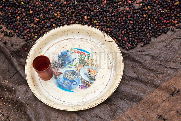 Drying Coffee Beans and Coffee Plate