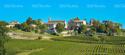 Saint-Emilion-Vineyard landscape-Vineyard south west of France