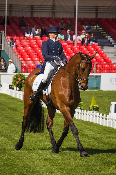 Badminton 2016 Dressage