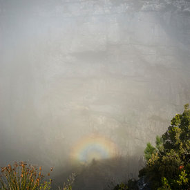 Brockenspectre