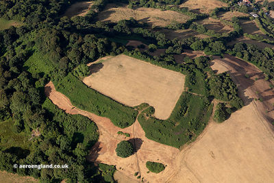 Dumpdon Camp hillfort aerial photograph