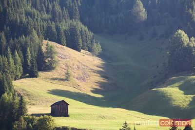 Wooden hut in a green valley