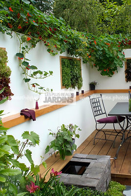 Allotment, Contemporary garden, Garden chair, garden designer, Garden furniture, Mini pond, Mini potager, Mini Vegetable garden, Small garden, Tropaeolum majus, Urban garden, Vegetable patch, Vegetable plot, Very small pond, Ironwork