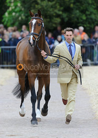Harry Meade and WILD LONE - First Horse Inspection, Mitsubishi Motors Badminton Horse Trials 2014
