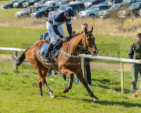 Race 2 Members Race - The Belvoir Point-to-point 2017