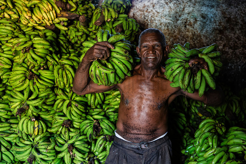 Man Holding Bunches of Bananas