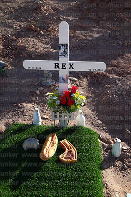 Grave of Rex the dog with plastic food in pet cemetery near Calama, Region II, Chile