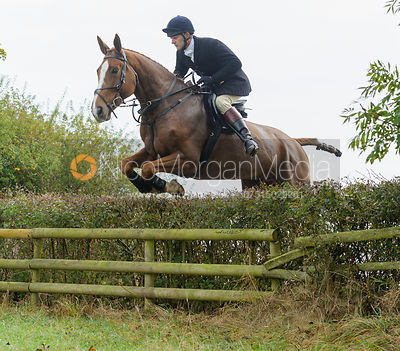 Adam Cooke jumping a hedge near Wilson's - The Cottesmore at Langham.