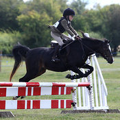 2nd August 2015 :: Charlton on Otmoor Show ::  Jumping- Morning