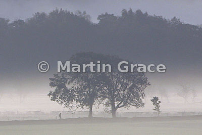 Early morning mist in the Lyth Valley with silhouetted figure, Cumbria, England