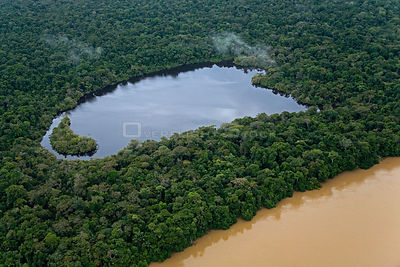 Aerial view of lake beside river in tropical rainforest, Rio Yavari, Amazonia, Peru