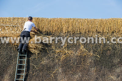 18th March, 2015. Thatcher Tom O'Byrnes making hay whilst the sun shines on the Scanlons of Kilberry Pub and Restaurant in th...