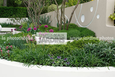 Jardin contemporain, Jardin design. Massif surélevé : Allium hollandicum 'Purple Sensation', Scilla peruviana, Peruvian scill...
