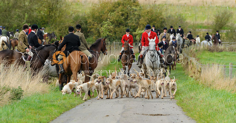 The Cottesmore Hunt at Somerby 2/11