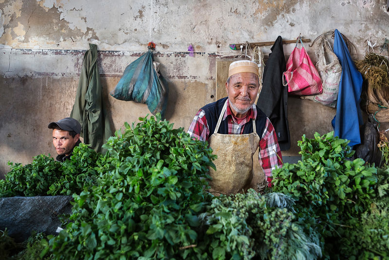 Man Selling Mint and Other Herbs in the Old Medina
