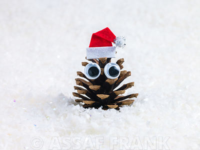 Face shaped pine cone with santa hat