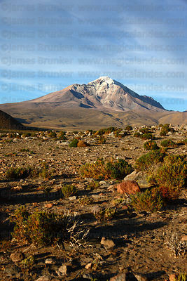 Cabaray / Cabaraya volcano and Central Andean dry puna desert, Isluga National Park , Region I , Chile