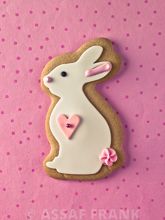 Bunny Rabbit Shaped Biscuits