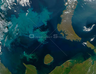 EARTH Barents Sea -- 27 Aug 2005 -- Phytoplankton bloom color the sea. Phytoplankton are tiny, microscopic plants that form t...