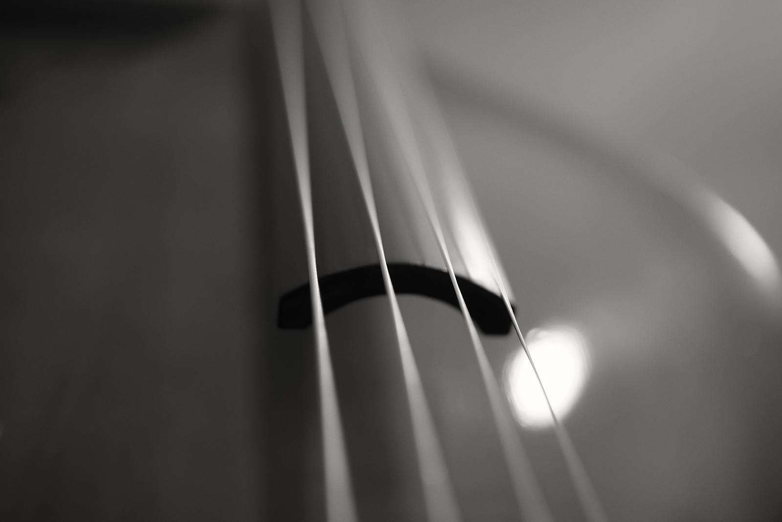 Double-Bass-6230588