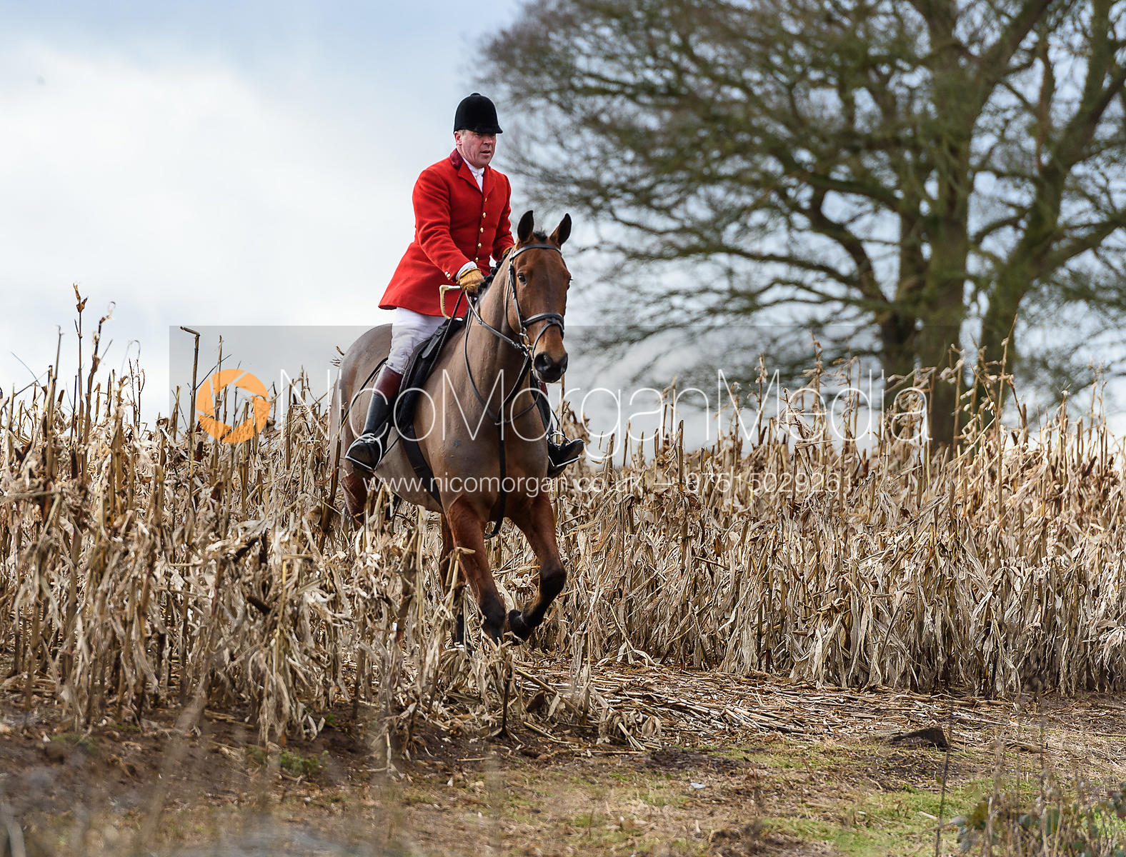 John Holliday at Croxton Park. The Belvoir Hunt at Eaton Grange 7/2