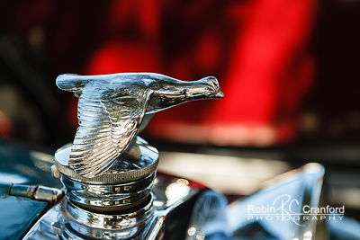 Art Deco Sunday 2014.  Hood Ornament on a 1928 Ford Model A. License Plate JP1928
