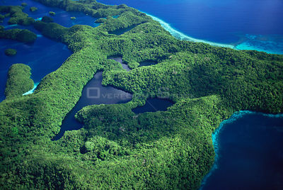 Aerial view of 'T' Lake, Rock Islands, Palau, Micronesia, Pacific ocean islands