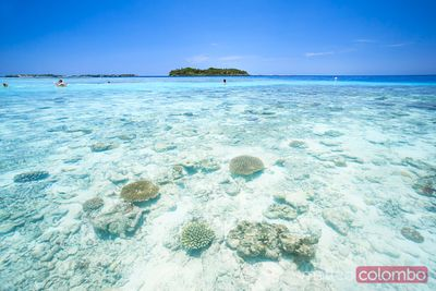 Coral reef and tropical island in the Maldives