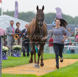 Alex Postolowsky and ISLANMORE GINGER - The first vets inspection (trot up),  Land Rover Burghley Horse Trials, 3rd September...