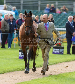 Bill Levett and IMPROVISE at the trot up, Land Rover Burghley Horse Trials 2018