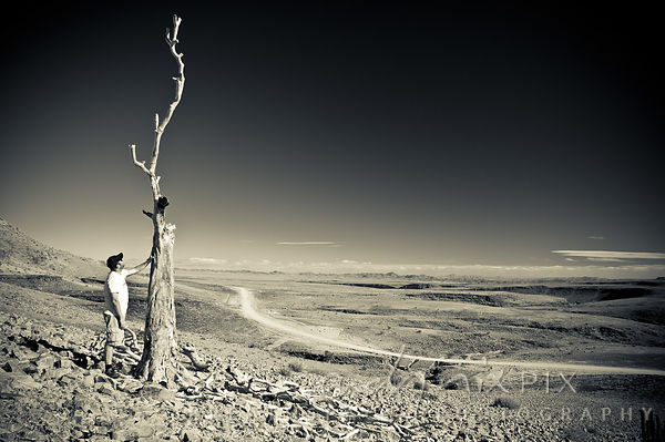 Man looking at and gently touching a ead quiver tree on a desert mountain