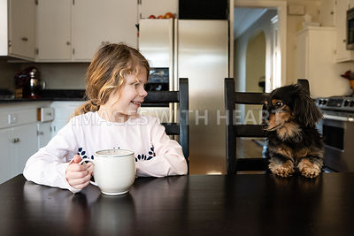 Dachshund and Girl at Kitchen Table 2