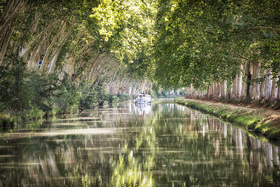 Heaven in a picture for me - The Canal du Midi