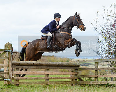 Abbie Weatherstone jumping a hunt jump at Stone Lodge. The Cottesmore Hunt at Tilton