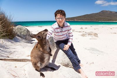 Child petting a little wallaby on the beach, Tasmania, Australia