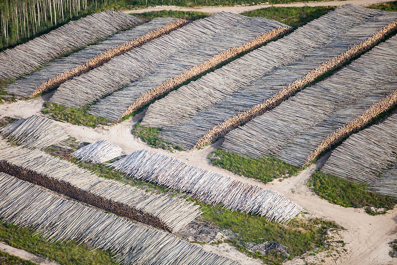 Boreal forest trees clear felled to make way for a new tar sands mine north of Fort McMurray, Alberta, Canada. August 2012