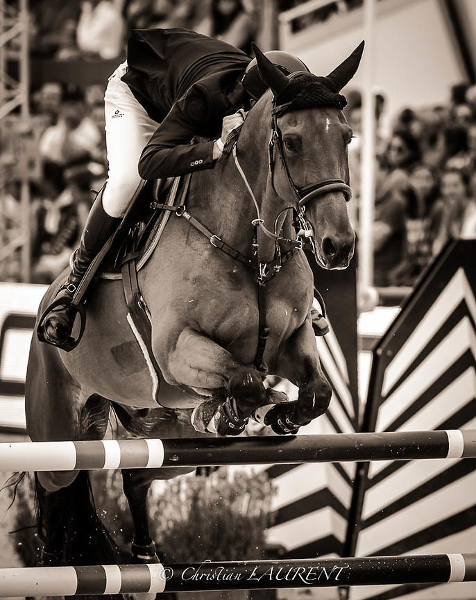 Knokke Hippique CSI5* June 2015