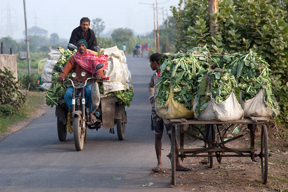 Farmers transporting cauliflower on old three-wheel motorcycles pass in front of the Dhapa Dumping Grounds, the primary landf...