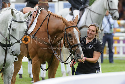 Andrew Nicholson's groom - Burghley Horse Trials 2013.